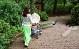 Первые прогулки после роддома