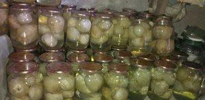 Запас настойки гриба для лечения