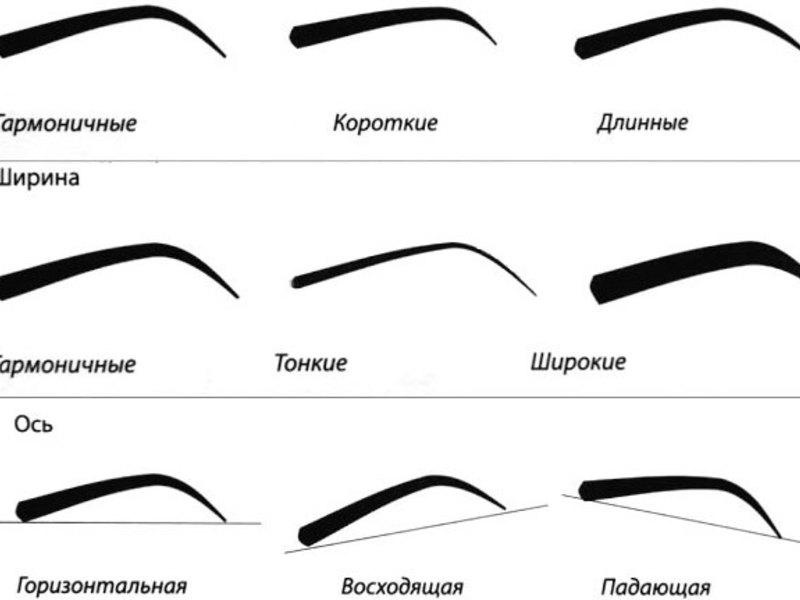 Как быстро нарисовать брови